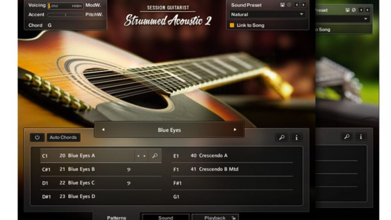 Native Instruments Session Guitarist for Windows Free Here!