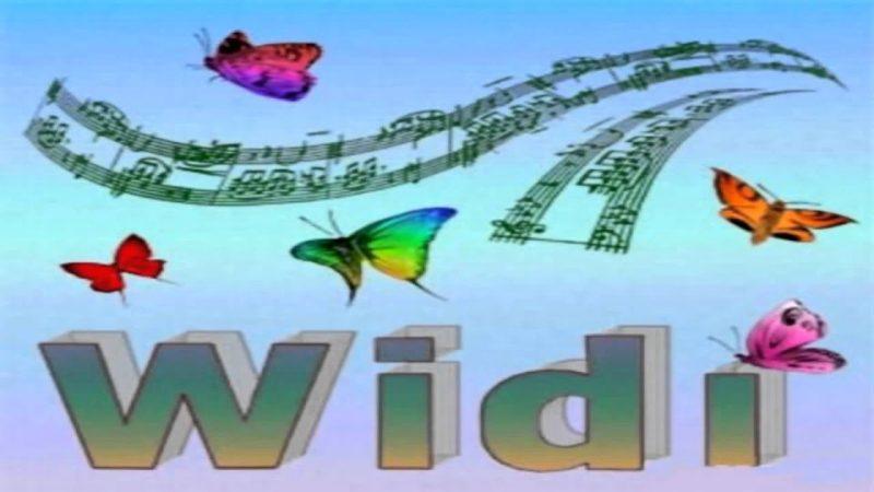 WIDI Recognition System Pro Crack 4.5.0 Build 677 + Full Keygen 2020